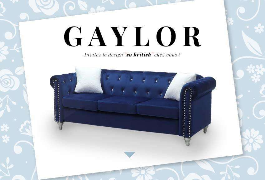 Collection Gaylor